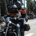 Harleys 2010 34 thumb r